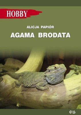 AGAMA BRODATA - Alicja Papi