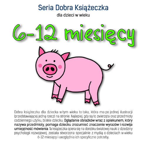 Dobra książeczka 6-12 miesięcy - Starok Agnieszka