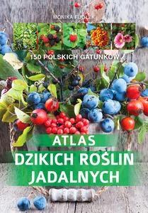 Atlas dzikich roślin jadalnych - Monika Fijo